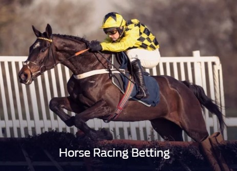 Horse Racing Betting with William Hill